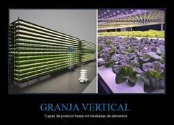 Enlace a Cultivando plantas con luces LED