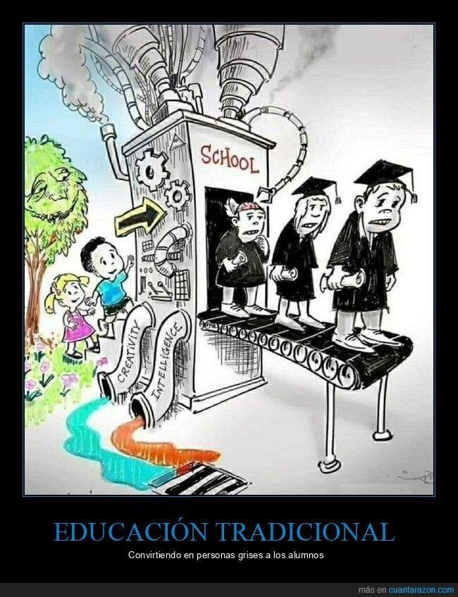 colegio,educación