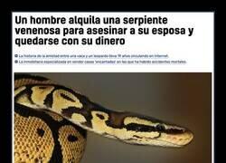 Enlace a Serpiente mortal
