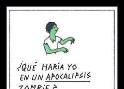 Enlace a Lo que podría ocurrir en un apocalipsis zombie