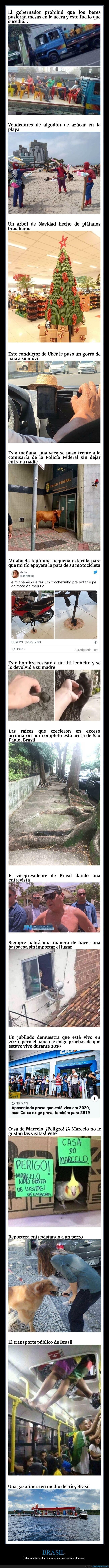 brasil,wtf