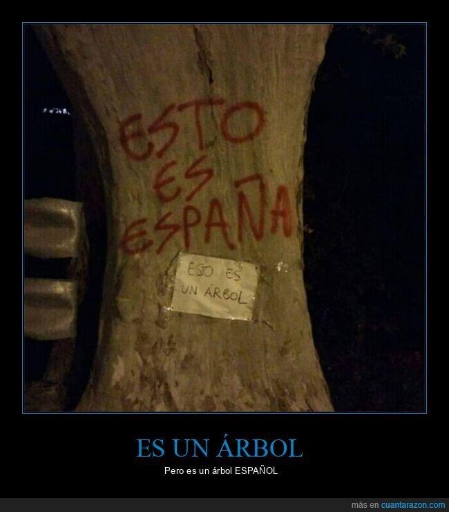 árbol,carteles,españa
