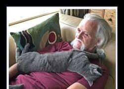 Enlace a Este artista de 75 años edita fotos de arbustos con la forma de su gato fallecido para honrarlo
