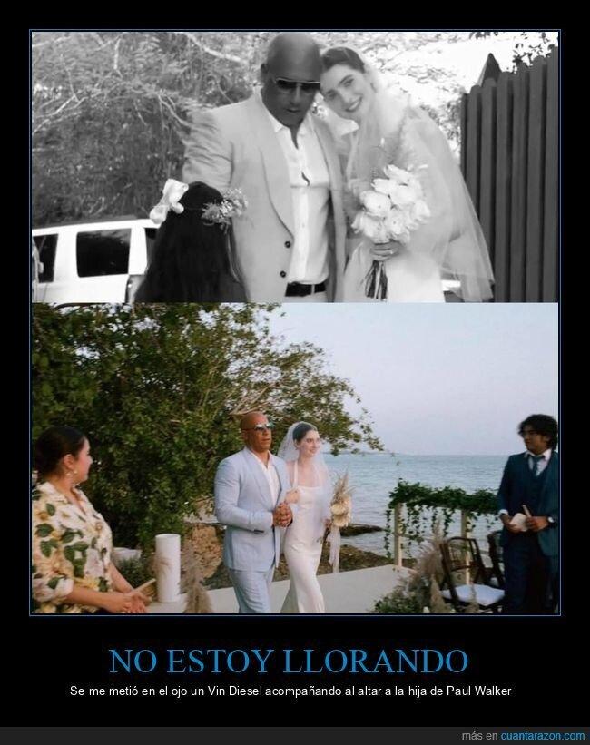 boda,hija,paul walker,vin diesel