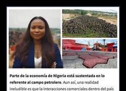 Enlace a Africana transforma miles de neumáticos desechados en ladrillos de alta resistencia