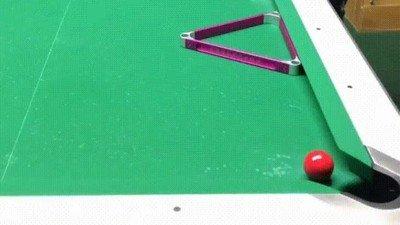 Enlace a Detrás de un gran jugador de billar se encuentra un genio de cuatro patas