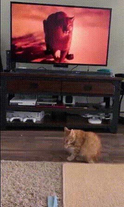 Enlace a Cuando te despistas y de repente sale algo de la televisión que da un miedo increíble