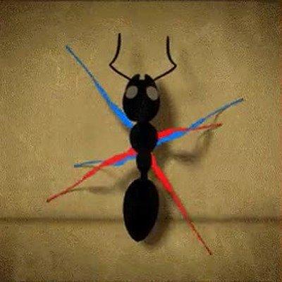 Enlace a Representación visual de cómo lo hacen las hormigas para caminar