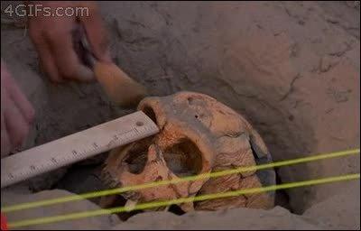 Enlace a En esta vida hay dos tipos de arqueólogos