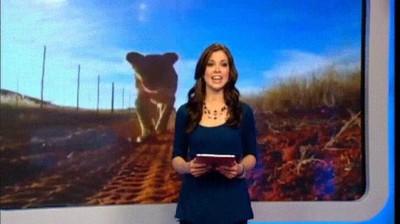 Enlace a Presentadoras de la tele que son comidas por un león en directo