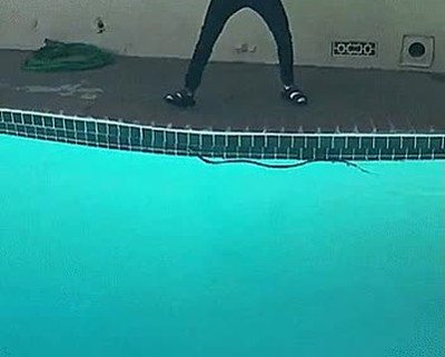 Enlace a La típica serpiente en la piscina