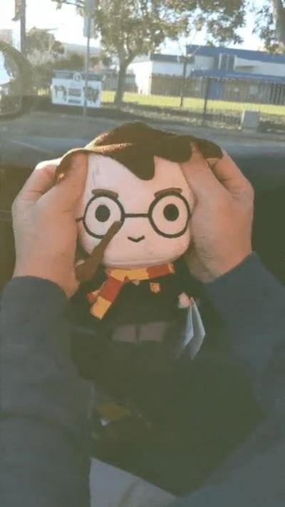 Enlace a Cepeda Potter hoy en día