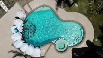 Enlace a Siempre he querido llenar una piscina de bolas