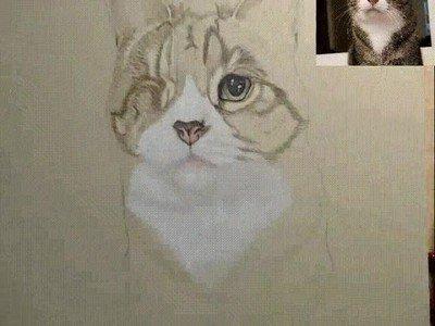 Enlace a Time lapse del dibujo de uno de mis gatos