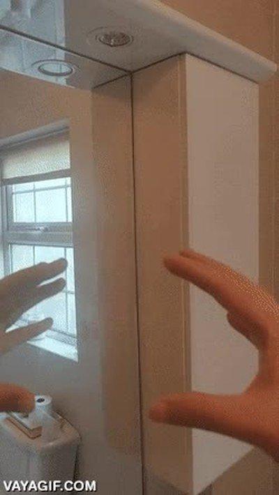 Enlace a Manos en el espejo