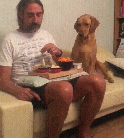 ¿Estabas mirándome la comida?