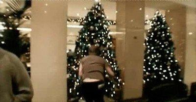 Enlace a Policías practicando arrestos con un árbol de navidad