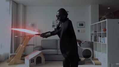 Enlace a Lo que hacía Darth Vader cuando nadie lo miraba