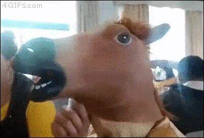 Enlace a La verdadera identidad detrás de la máscara de caballo
