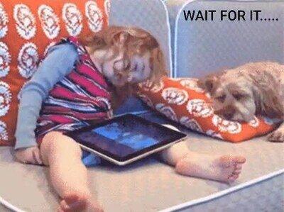Enlace a Ojalá este perro para nunca quedarme dormido viendo series