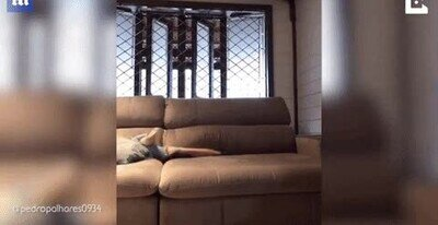 Enlace a Este chaval ha creado un escondite dentro del sofá de sus padres
