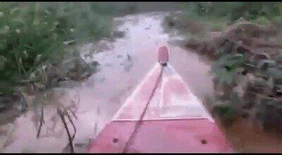 Enlace a ¿Te atreverías a cruzar este pantano lleno de cocodrilos?