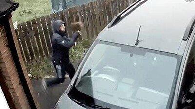 Enlace a Cometer delitos a veces no sale a cuenta