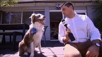 Enlace a La mejor entrevista de todos los tiempos