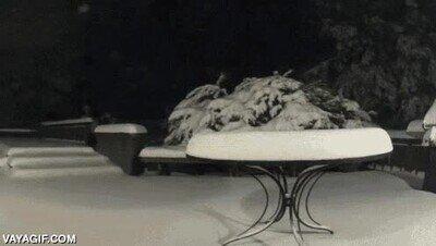 Enlace a Así es cómo se acumula la nieve poco a poco