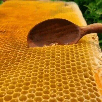 Enlace a La miel es adictiva
