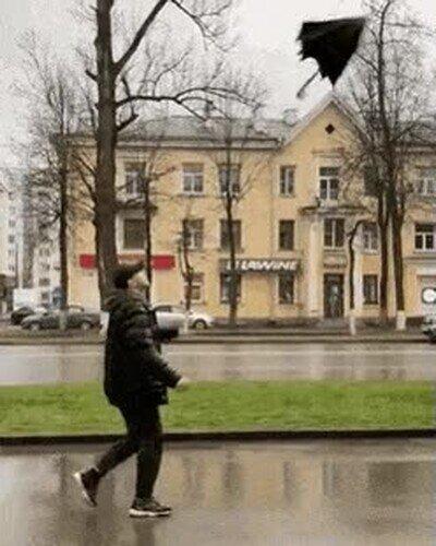 Enlace a Abrir un paraguas like a boss