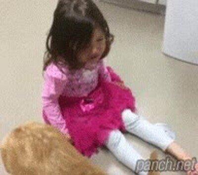 Enlace a La diferencia entre un gato y un perro
