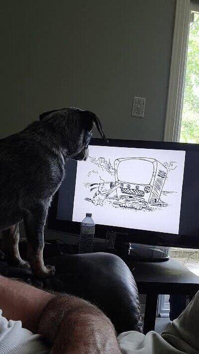 Enlace a Inception pero con perros mirando la tele