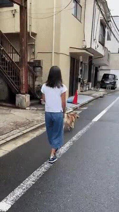 Enlace a Nunca había visto a nadie caminar con tanto estilo