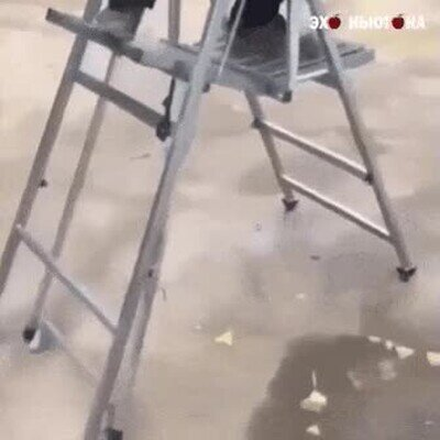 Enlace a Una escalera con la que también podrás andar