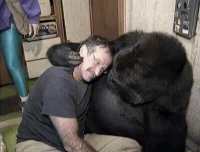 Enlace a Humanos y animales qe se quieren tanto como si fuesen hermanos