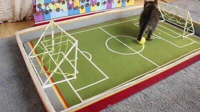 Enlace a El partido de fútbol más emocionante de la historia