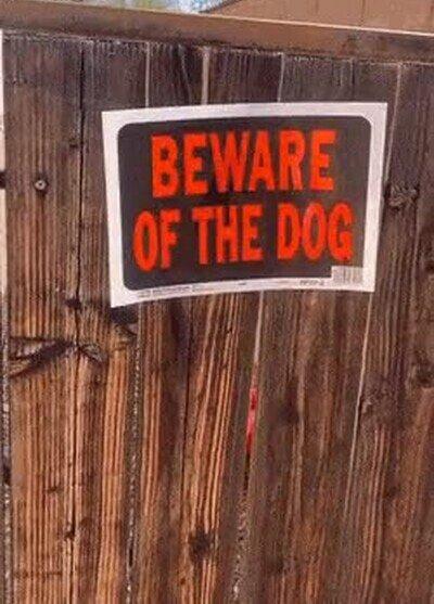 Enlace a Cuidado, perro peligroso