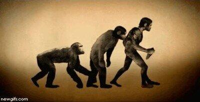 Enlace a La evolución de la humanidad