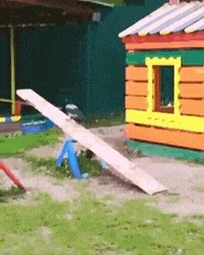 Enlace a Este cuervo no necesita a nadie para pasarlo bien