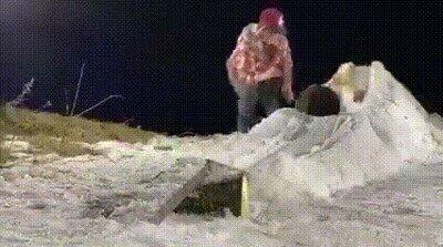Enlace a Un gato haciendo snowboard. Ya lo he visto todo hoy