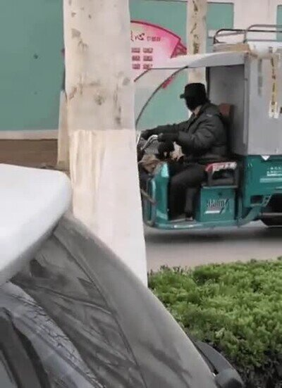 Enlace a Este perro se ha montado su propio servicio de taxis