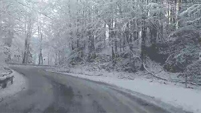 Enlace a Conducir en condiciones de nieve es peligroso