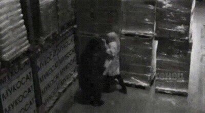 Enlace a Un oso que solo quiere un abrazo