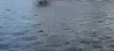 Un alce corriendo por encima del agua