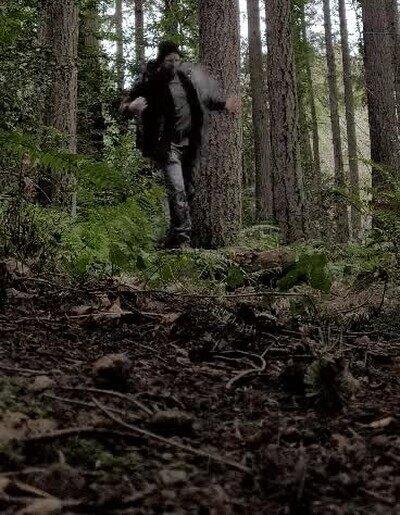 Enlace a Ten cuidado cuando camines a solas por el bosque