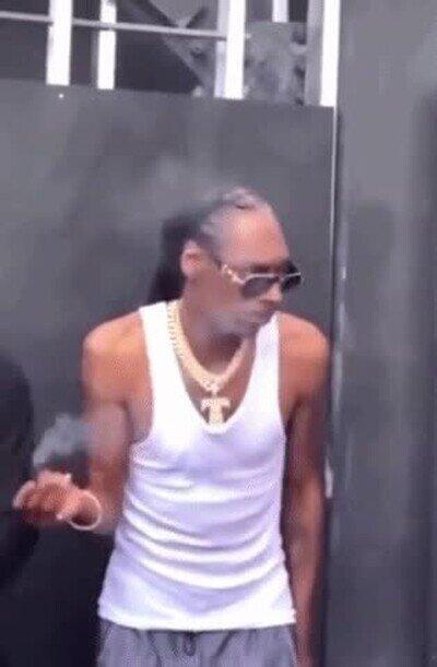 Enlace a Ni la policía puede resistirse al encanto de Snoop Dogg