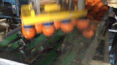 Enlace a Así se preparan las naranjas en una fábrica