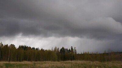 Enlace a Se avecina una tormenta de las bestias