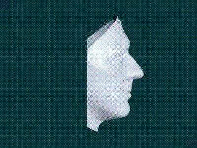 Enlace a Una genial ilusión óptica